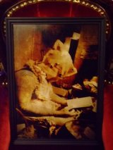 「Suke奇世-楽屋がフリークスの読書の時間-」 A4額写真