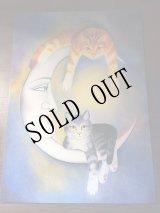Anna Hollerer Cat Post Card