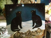 他の写真を見る1: 【再入荷】Anna Hollerer-Wischin Cat Post Card