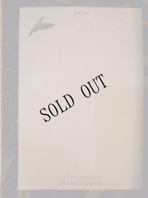 画像3: 【再入荷】「リリー・スケルトン」」Arata Nakajima ポストカード