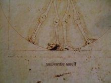他の写真を見る3: 【再入荷】「ウィトルウィルス的骨格図」Arata Nakajima ポストカード