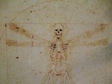 他の写真を見る1: 【再入荷】「ウィトルウィルス的骨格図」Arata Nakajima ポストカード