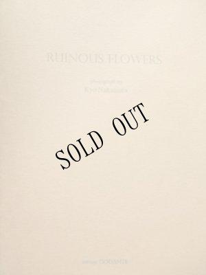 画像1: ※RUINOUS  FLOWERS ポートフォリオ 私家版50部限定(ナンバー入り)