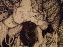 他の写真を見る2: [再入荷]精神標本-開放 genome氏点描画作品コピーA4額装品