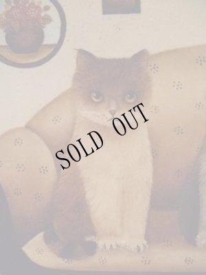 画像3: [再入荷]nna Hollerer-Wischin Cat Post Card