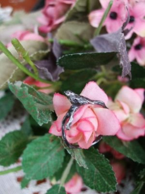 画像3: 【再入荷】銀製 小鳥リング「枝」
