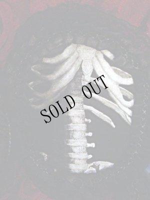 画像4: 【再入荷】HUMAN SKELETON in lace frame 骨格装飾ベルト