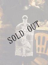 Raven in victorian cage birdcage women gothic T-shirt