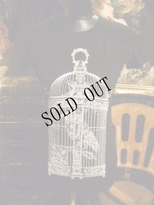 画像1: Raven in victorian cage birdcage women gothic T-shirt