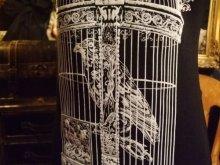 他の写真を見る3: Raven in victorian cage birdcage women gothic T-shirt