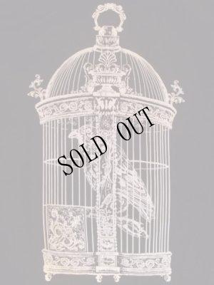 画像3: Raven in victorian cage birdcage women gothic T-shirt