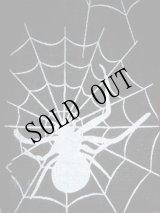 蜘蛛の巣ストッキング