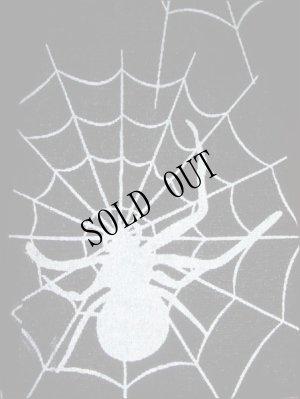 画像1: 蜘蛛の巣ストッキング