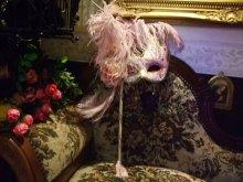 他の写真を見る2: ヴェネチアンカーニバルマスク・マスケラ フェザーandバー