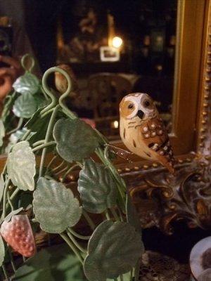 画像5: ウッデンデコ フクロウ クリップ