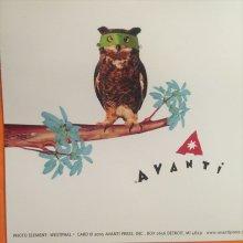 他の写真を見る2: ふくろう大判メッセージカード+封筒セット [ハロウィン] AVANTI PRESS