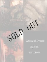 -Ghost of Dream-2L写真