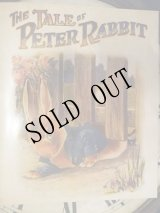洋書[The tale of Peter Rabbit]Story Book