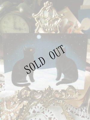 画像1: 【再入荷】Anna Hollerer-Wischin Cat Post Card