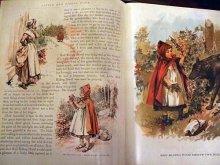 他の写真を見る1: 洋書[Little Red riding hood]Story Book