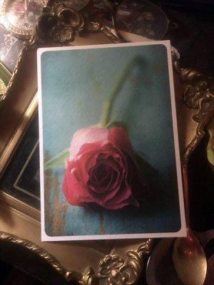 画像2: ドイツ製ポストカード Rose