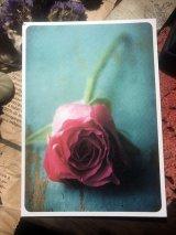 ドイツ製ポストカード Rose