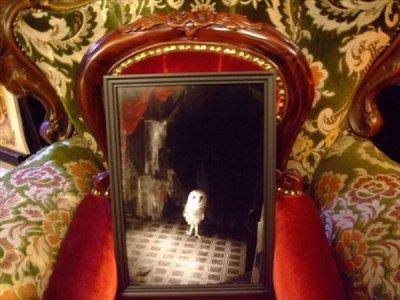 画像1: 「Pretty spook」 A4額写真