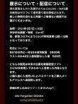 画像4: 貸切券◆オンライン配信◆01月09+10日[土日][画廊・珈琲 Zaroff企画] 人形作家清水真理×Rose de Reficul et Guigglesコラボ展記念企画 (4)