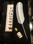 画像1: Feather Pen set 羽根ペンのボックスセット (1)